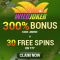 Wild Joker Casino - 30 Spins & 300% Bonus