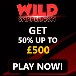WildSpinner Casino